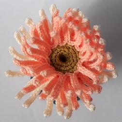 crochet sea anemone handmade diy free pattern crochet coral reef ravelry pinterest fat cat crochet