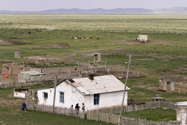 steppe-2.jpg