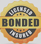 licensed-bonded-insured-vector-icon-busi