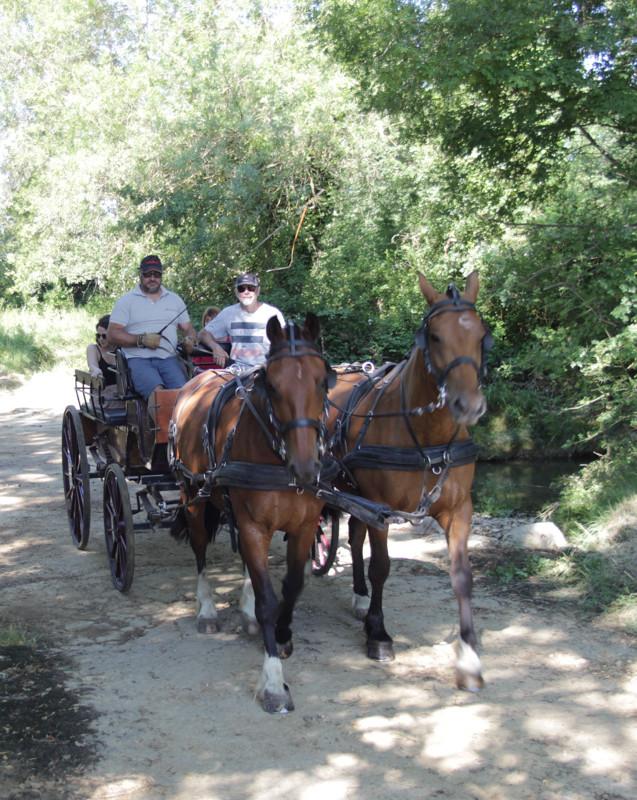 balade en wagonnette