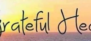 Gratitude is like a warm blanket