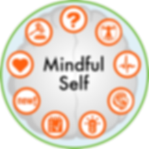 Mindful Self Circle