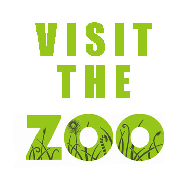 Tour the zoo from your home