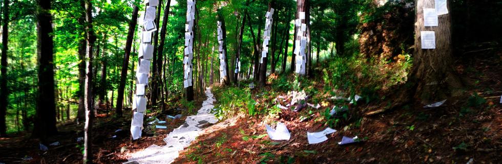 Paper Trails.jpg