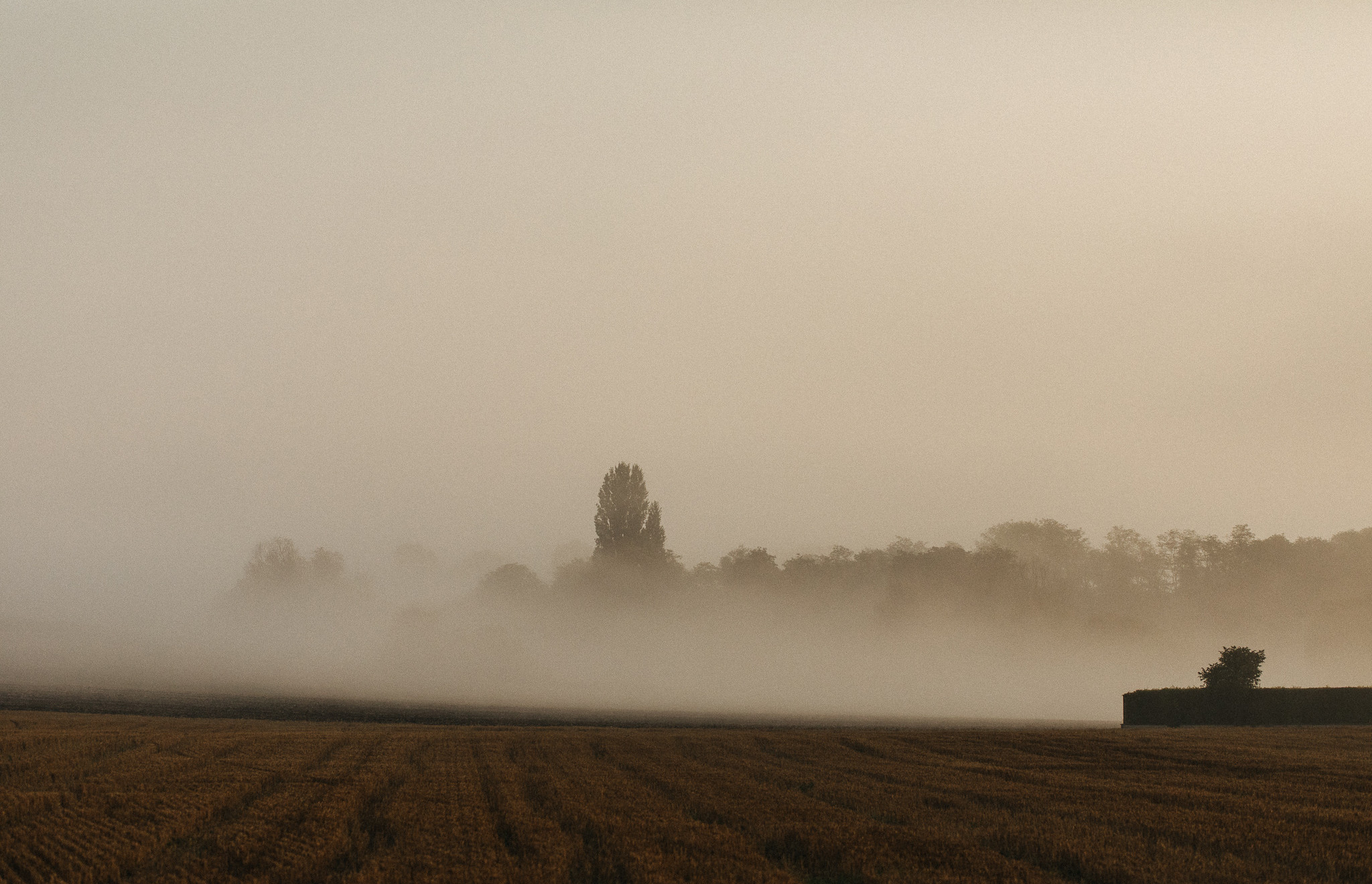 Early Morning in Yvelines