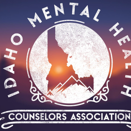 Dr Michele Kerulis featured with the Idaho Mental Health Counselors Association