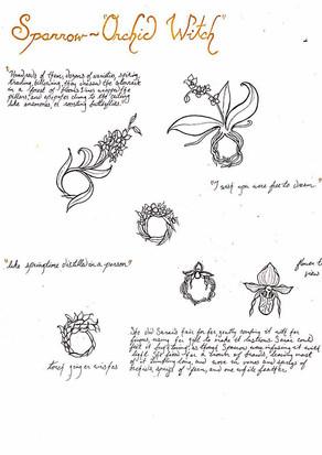 Sparrow: sketches