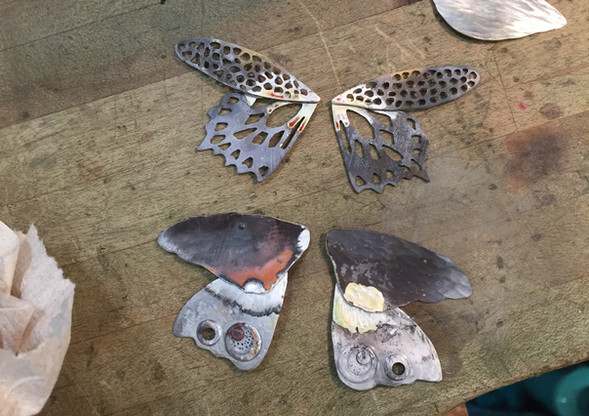 Aliferous: wing sets