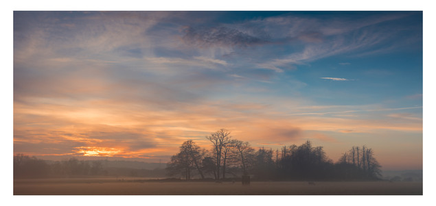 Rising Mist 2 | Sheffield Park