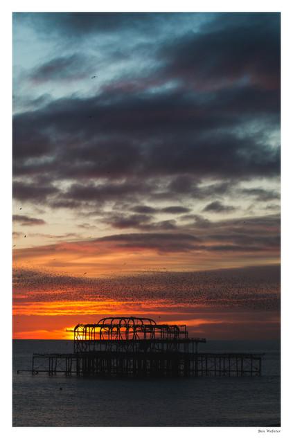 Murmuration 2 | Brighton