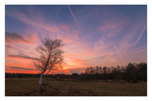 Winter Sky | Chailey Common