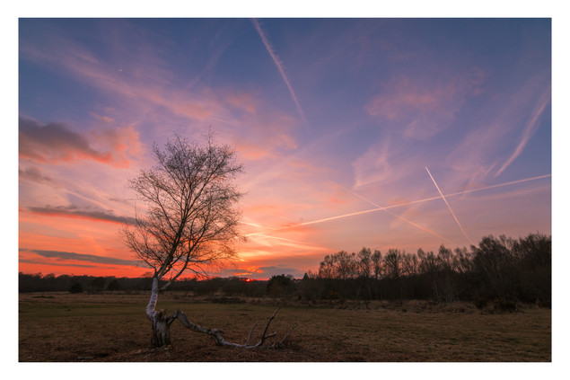 Winter Sky | Chailey Common