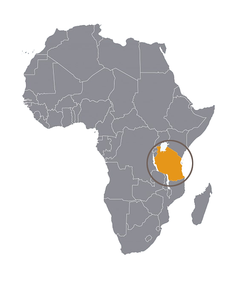 Mosca_Mapa_Africa.png