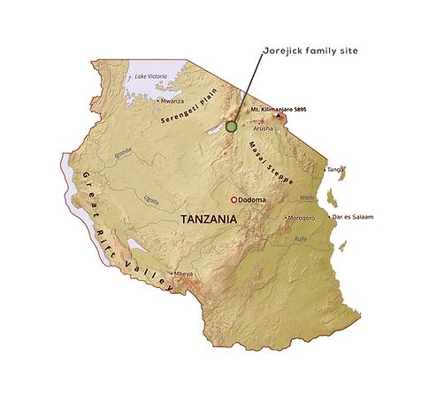 Mosca_Mapa_Tanzania.png