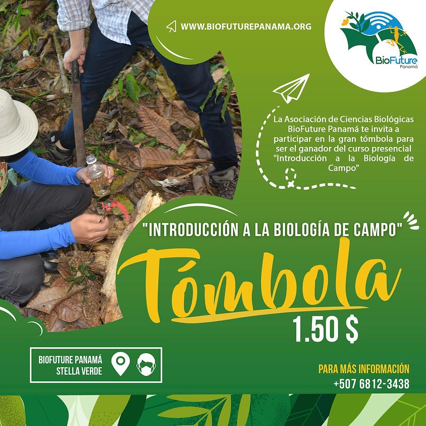 Tómbola (Introducción a la Biología de Campo).