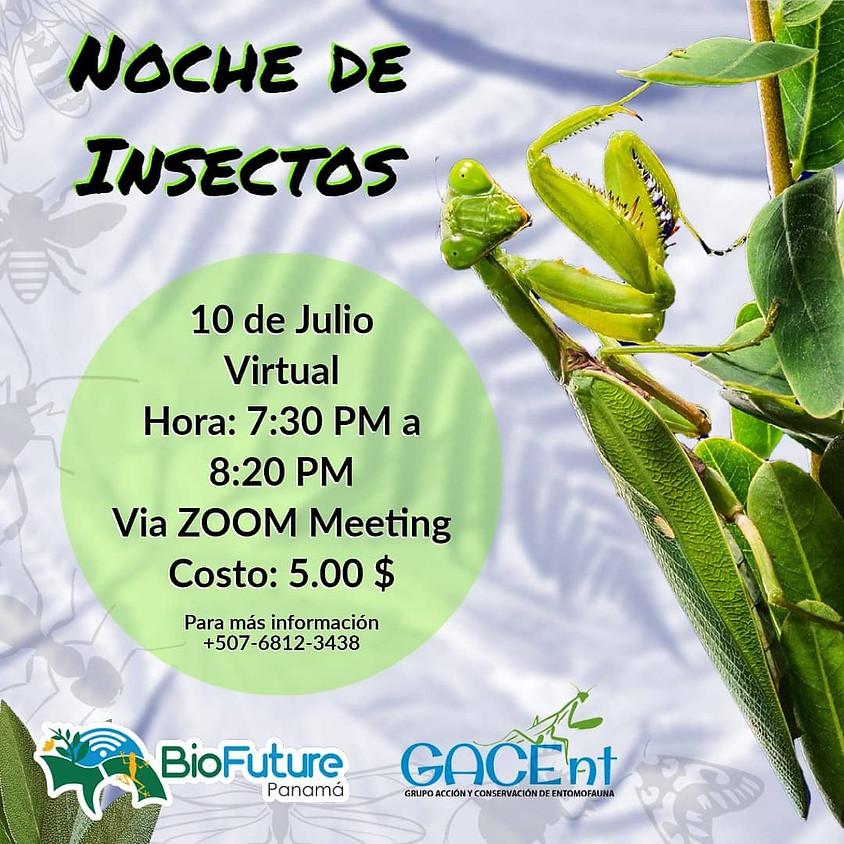 Noche de Insectos BioFuture Panamá