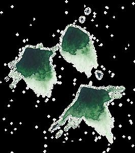 splash4.png