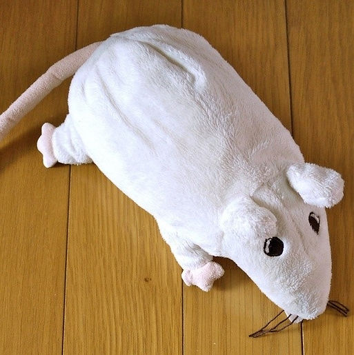 lab rat_3.jpg