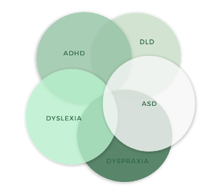 Co-occurring features are the norm rather than the exception. For example, 22 to 83% of people diagnosed with autism (ASD) meet DSM criteria for ADHD and 30 to 65% of people diagnosed with ADHD present significant features of ASD (Leitner, 2014). Around 50% of children with dyslexia also meet criteria for DLD (Developmental Language Disorder) and vice versa (McArthur et al., 2000).