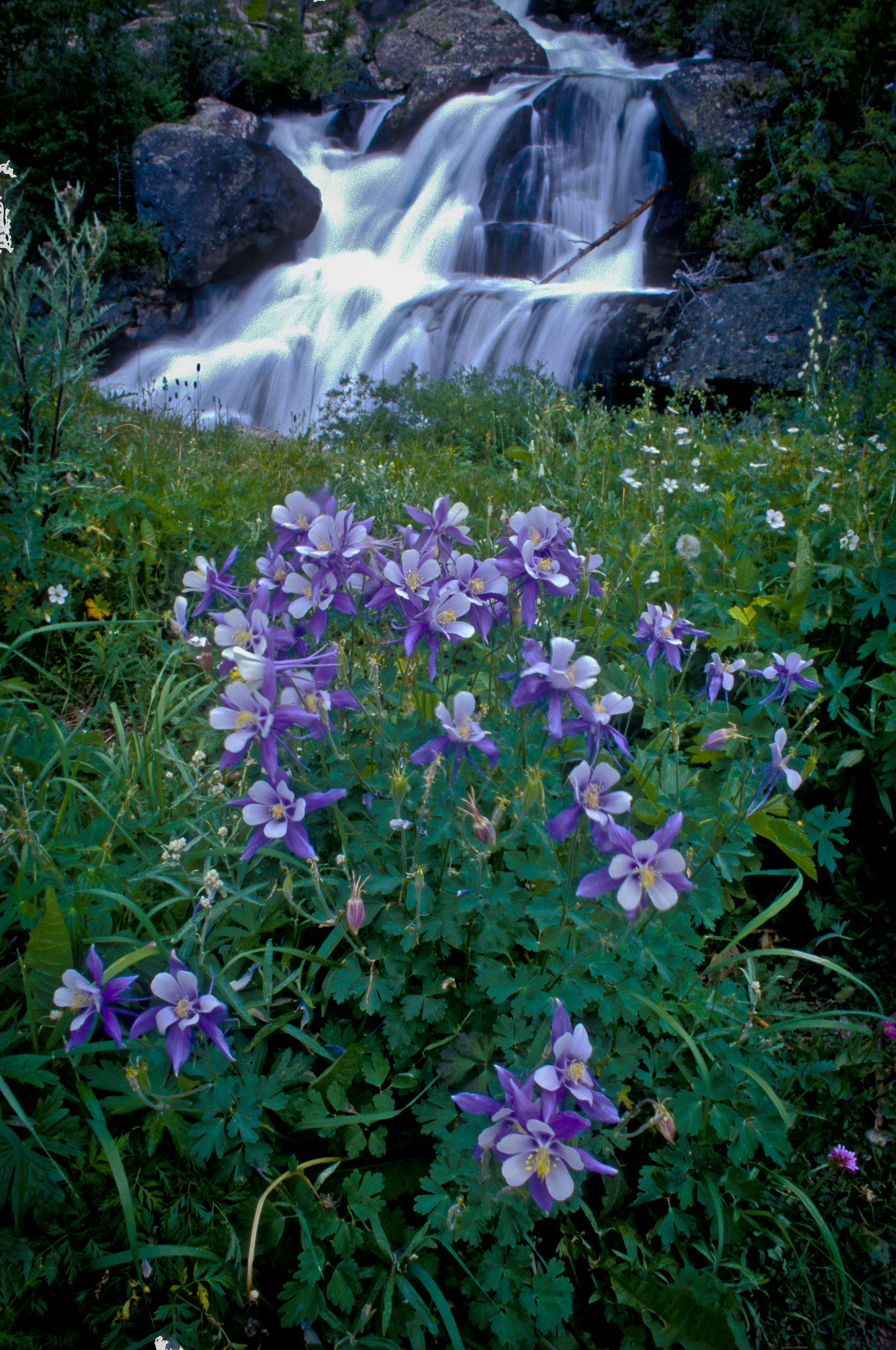 Columbine waterfall