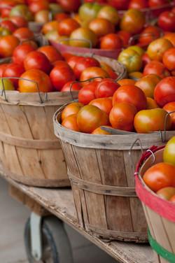 tomatoe bushels
