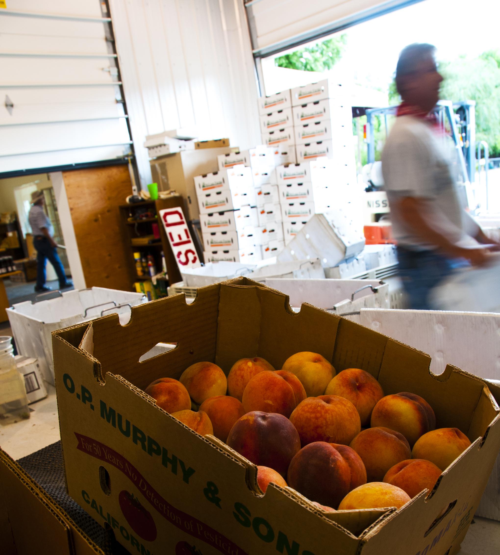 packing peaches