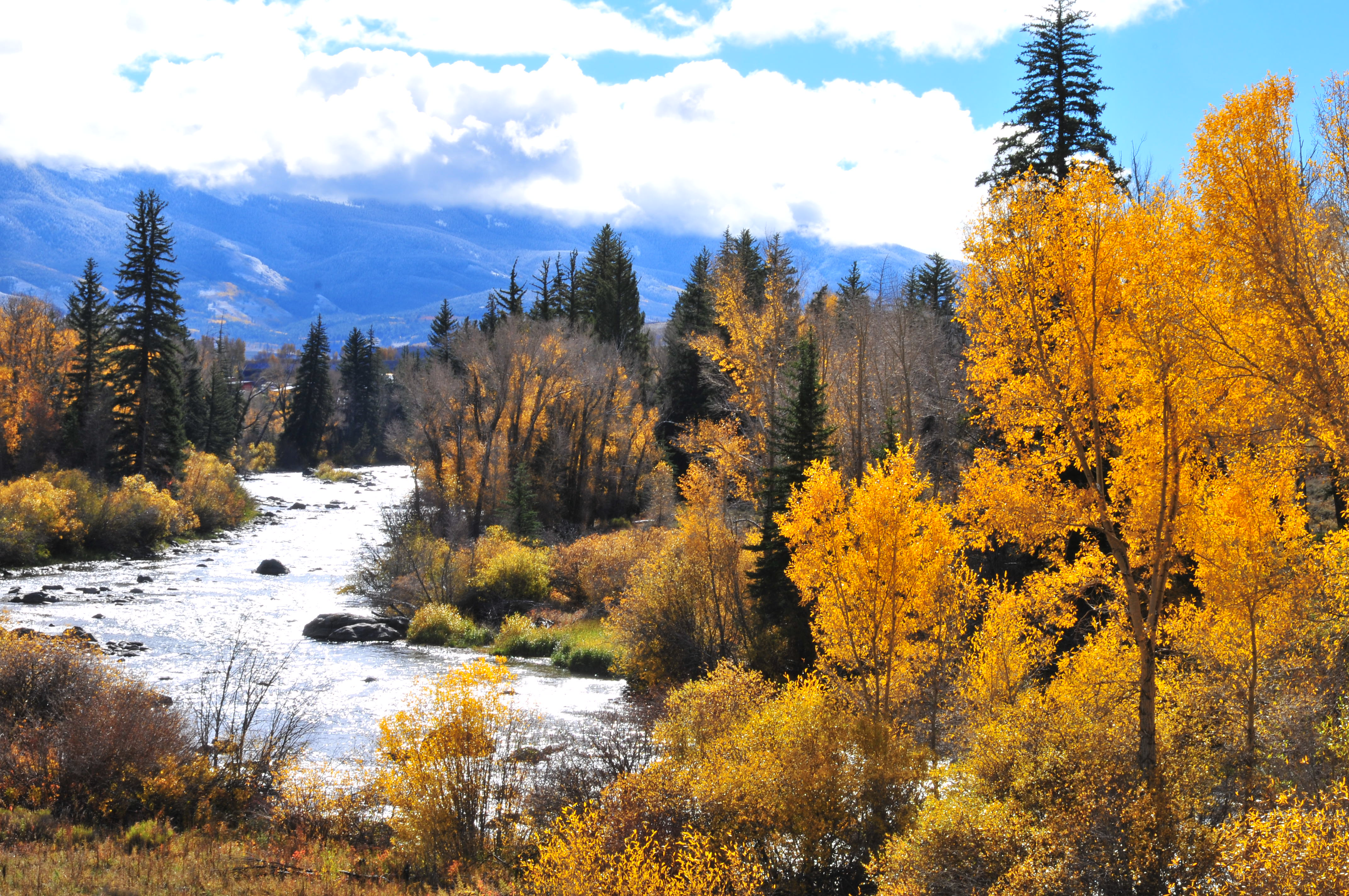 Blue River in Fall