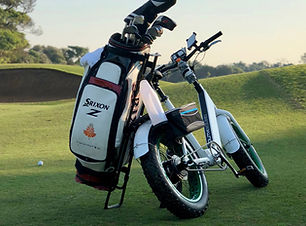 Electric golf bike