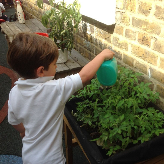 Looking after our plants in the Nursery