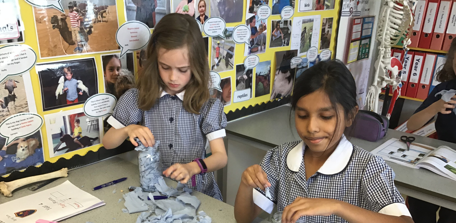 Year 4 studying plants in Science