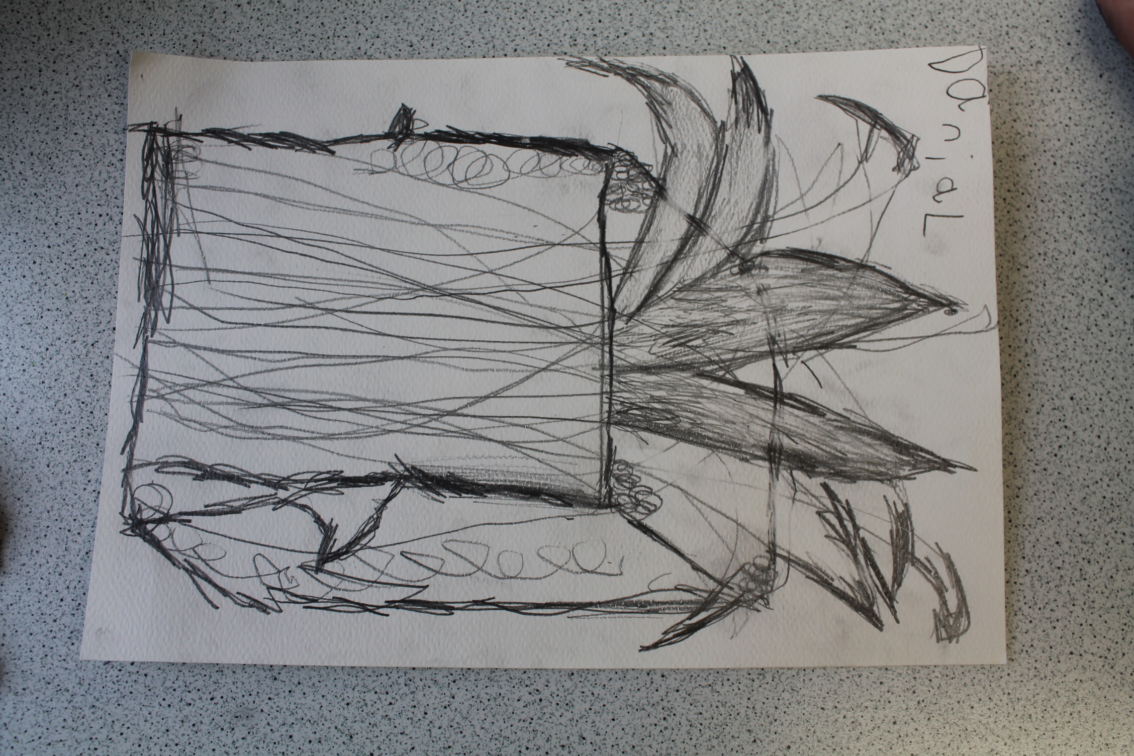 Year 1 Observational Drawing