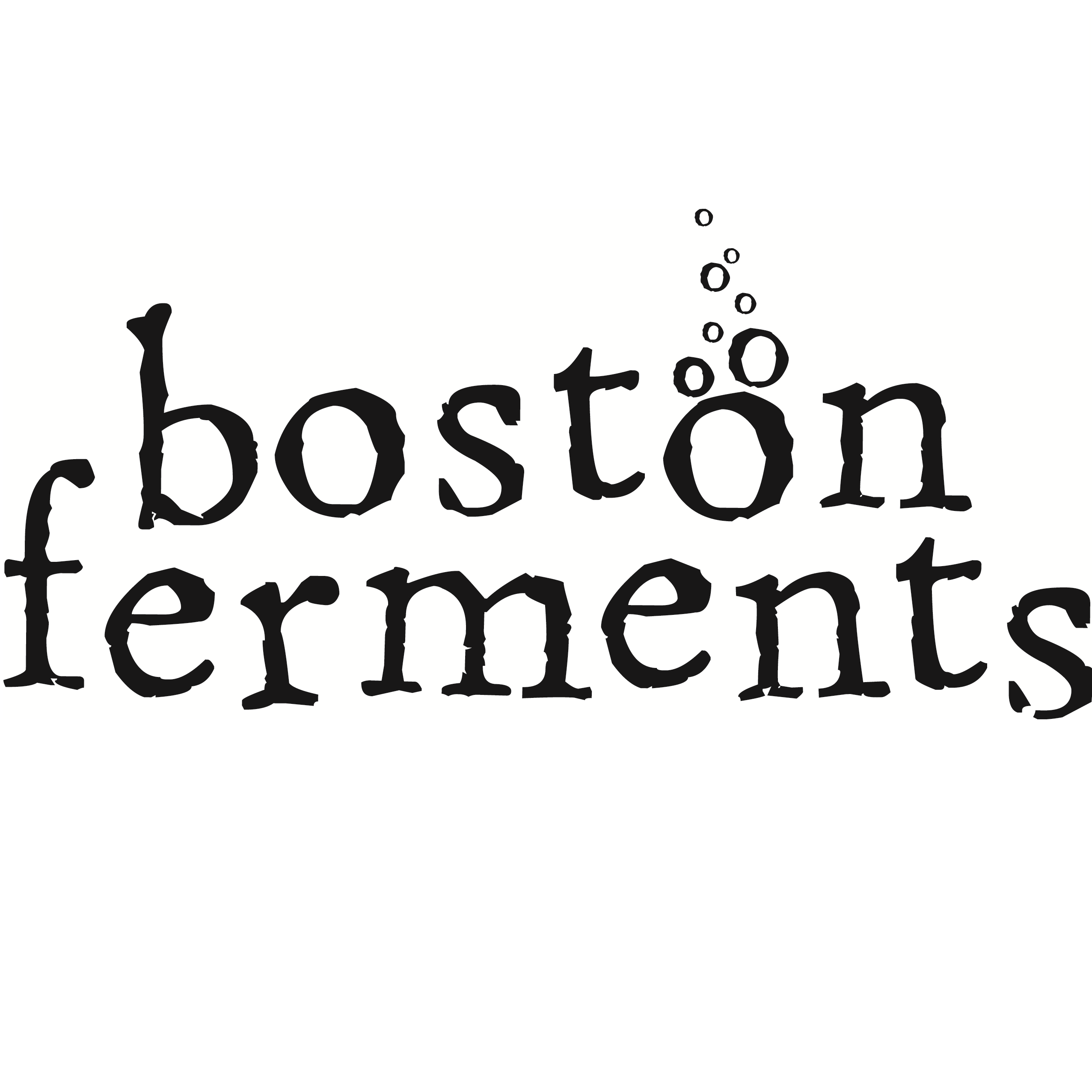 Image result for boston fermentation festival 2019