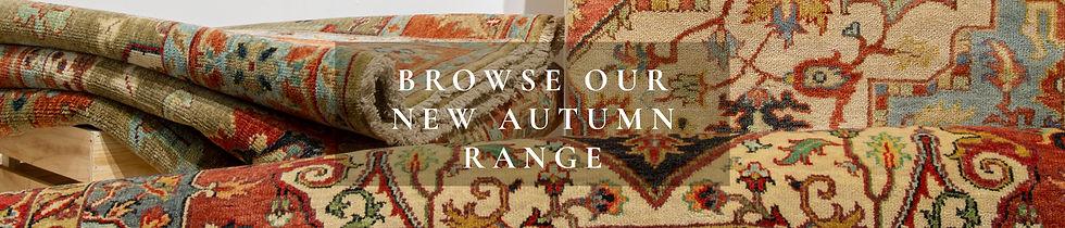 Wix Banner - Autumn Range 1.jpg