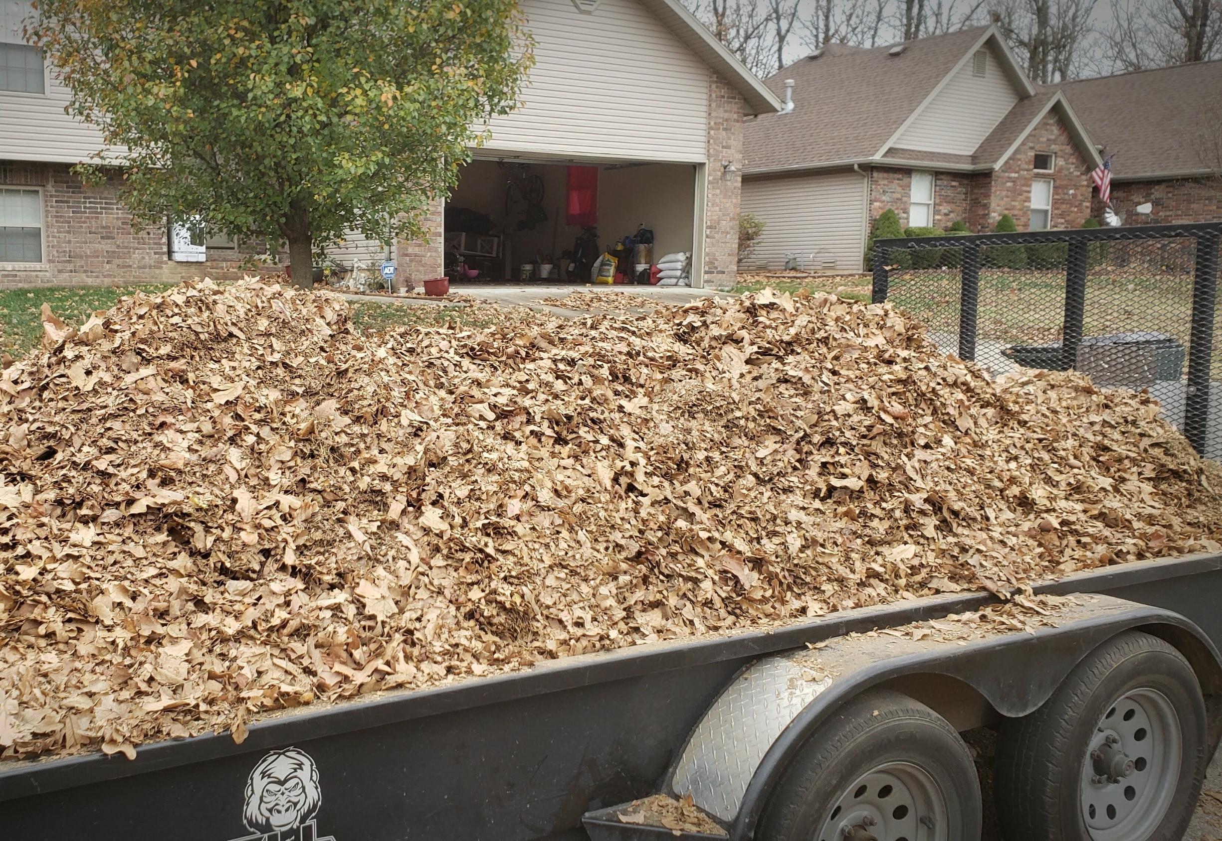 Lawn/Tree Debris Removal & Hauling
