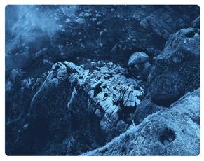 ANATOMY XVI  X-Ray film 42X35 Cm.