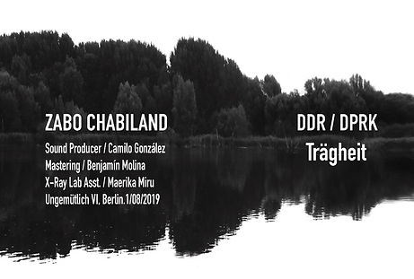 DDR DPRK TRAGHEIT