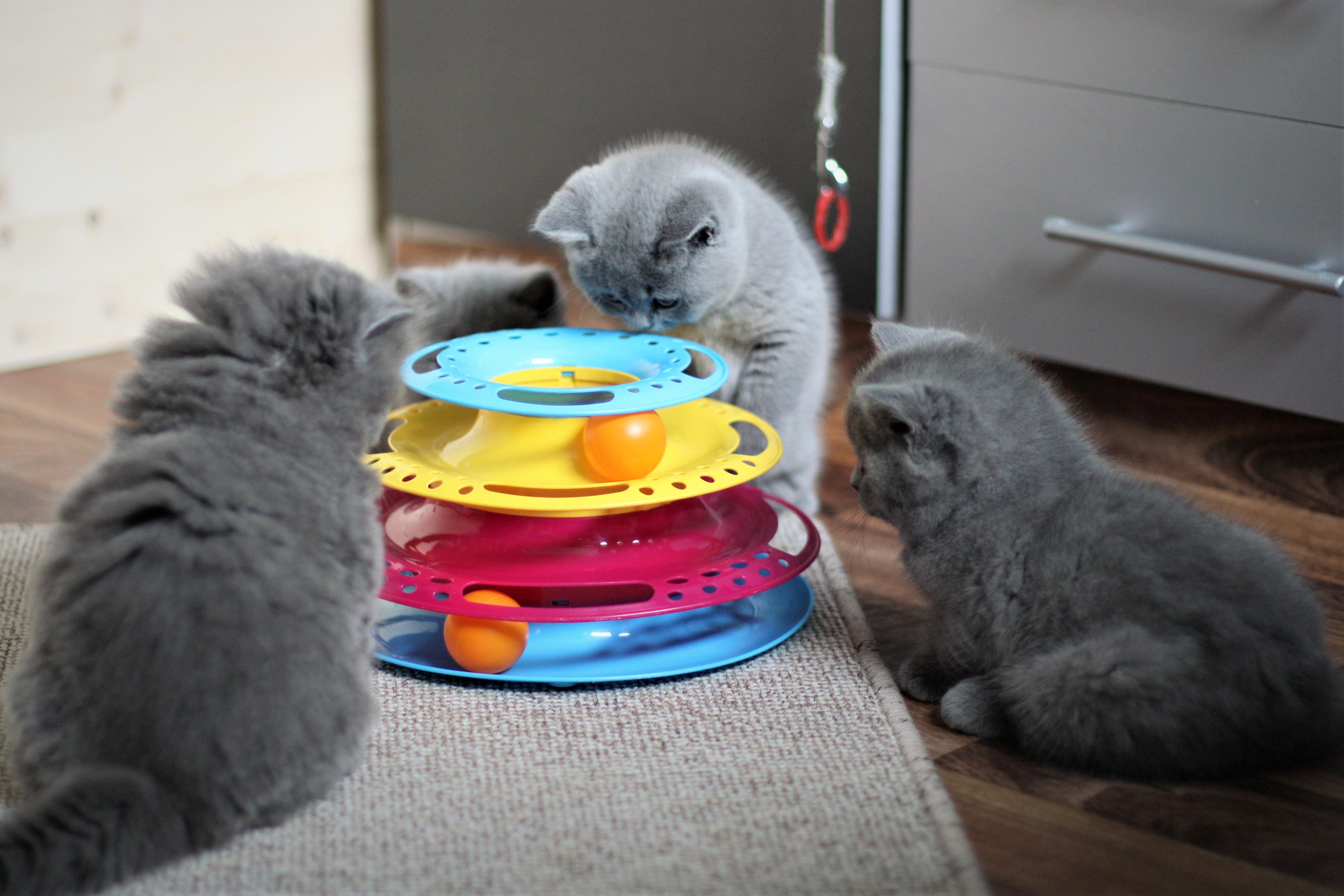 Zusammen zu spielen macht Spaß!