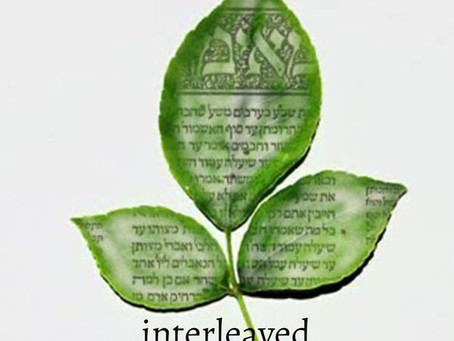 "Rabbi Lawrence interview on ""Interleaved"" Podcast"
