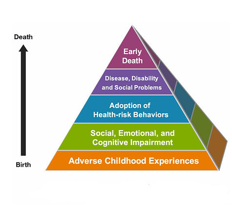 The Wellness Codes - Adverse Childhood Experiences pyramid