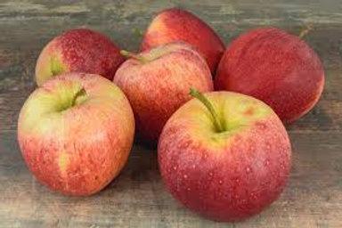 Pomme GALA des ALPES