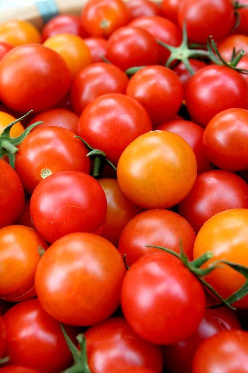 Tomates rondes non calibrées 3kg
