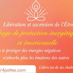 Atelier : protection, libération et ascension de l'Etre