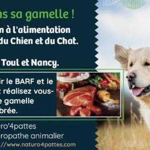 Atelier : alimentation naturelle chez le Chien et le Chat (raw feeding et BARF).