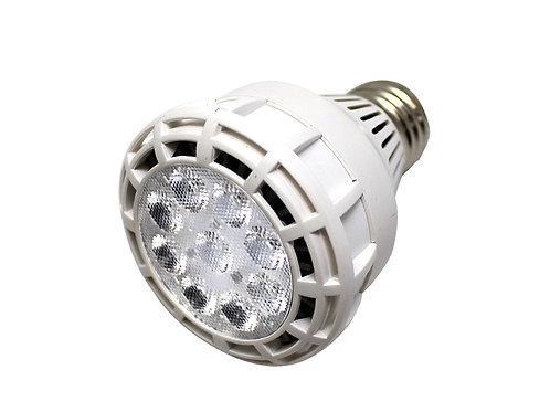 Par20 LED jewelry lighting