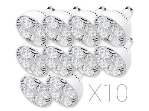 QuadraLux Par30 LED 10 Pack Bundle
