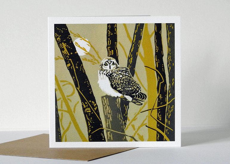 The reverist owl