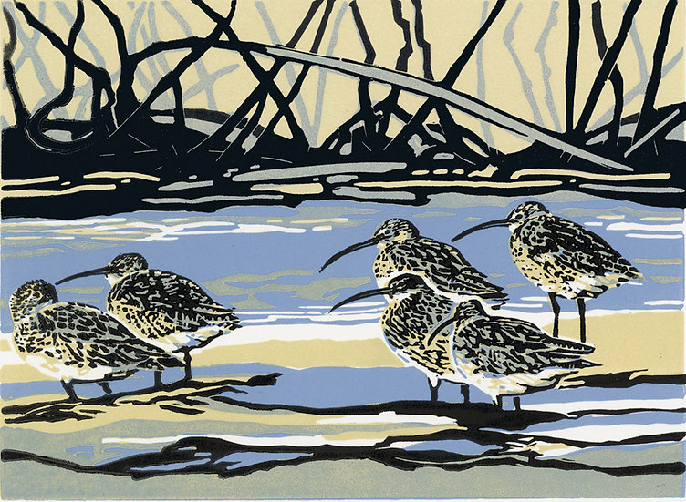 Calling curlews