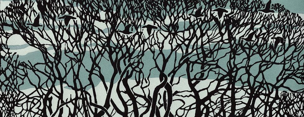 Lockdown trees.jpg