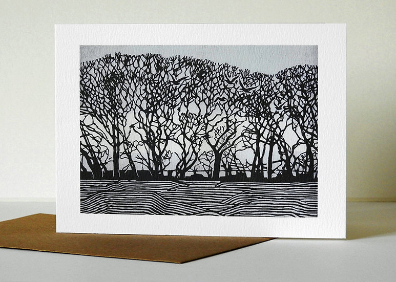 Stiffkey trees