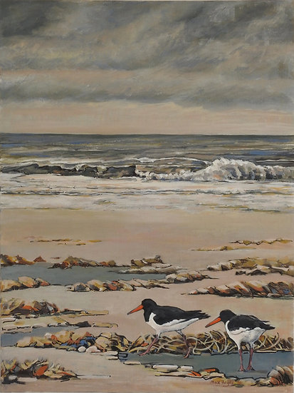 'Oystercatchers' Medium Unframed Signed Limited Edition print